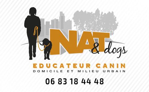 Cours Collectif Dans Un Parc Carte De Visite Natanddogs
